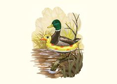 """Duck in Training"" - Threadless.com - Best t-shirts in the world"