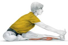 32. Tibial Flexion Seated With Knee Extended