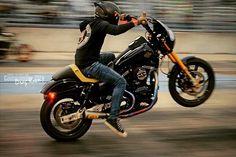 Harley Davidson News – Harley Davidson Bike Pics Harley Davidson Dyna, Harley Dyna, Harley Street Bob, Dyna Low Rider, Motorcycle Manufacturers, Best Classic Cars, Custom Harleys, Street Bikes, Cool Bikes