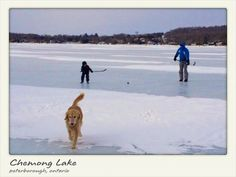 Check out Chemong Lake