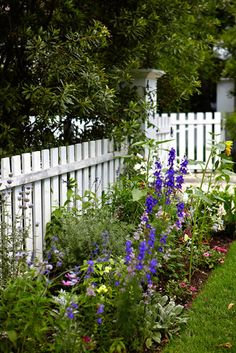 lovely cottage landscape if only I had a pickett fence