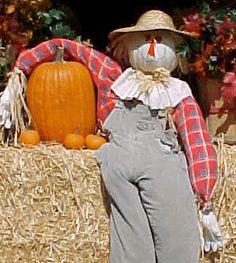 images of scarecrows Scarecrow Crafts, Halloween Scarecrow, Fall Scarecrows, Scarecrow Ideas, Fall Halloween, Scarecrow Pictures, Fall Festival Crafts, Autumn Garden, Autumn Art