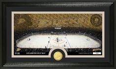 AAA Sports Memorabilia LLC - Anaheim Ducks Bronze Coin Panoramic Photo Mint, $59.99 (http://www.aaasportsmemorabilia.com/nhl/anaheim-ducks-bronze-coin-panoramic-photo-mint/)