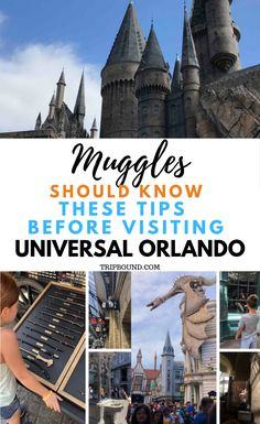 10 Things Muggles Should Know Before Visiting the Wizarding World of Harry Potter 10 Things Muggles Should Know Before Visiting Universal Orlando Universal Studios Florida, Hogwarts Universal Studios, Universal Studios Outfit, Universal Parks, Universal Studios Restaurants, Universal City Walk Orlando, Hogwarts Orlando, Universal Harry Potter Orlando, Orlando Travel
