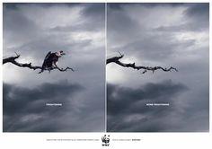 WWF. For a living planet.