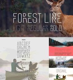 Introducing Forest line font - creative linear font in three versions: Light, Regular, Bold. Free for download. For personal use. File format: .otf, .ttf, .svg, .woff for Photoshop or other software. File size: 1 Mb.