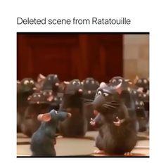 I can't stop laughing😂 - funny funnyaf lol meme memes memesdaily memes😂 memed memez memer ratatouille rat mouse ohshitarat popular popularmemes popularmeme famous explorepage lightskinmonte Funny Video Memes, Funny Relatable Memes, Funny Posts, Dankest Memes, Elmo Memes, Stupid Funny, Haha Funny, Funny Cute, Funny Stuff