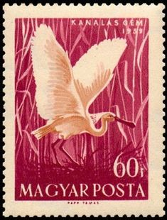 Eurasian Spoonbill stamps - mainly images - gallery format Postage Stamp Art, Vintage Stamps, Some Image, Moose Art, Art Pieces, Birds, Storks, History, Gallery