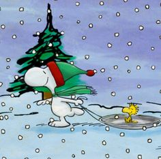 Snoopy Christmas                                                                                                                                                                                 More