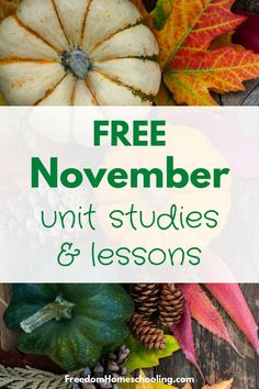 Free unit studies and lessons for November. Thanksgiving, Native American Heritage Month, Election Day, Veterans Day, X-ray Day, Mayflower Compact, World Kindness Day, Geography Awareness Week, Homemade Bread Day, Take a Hike Day, Gettysburg Adress, Black Friday, National Cake Day & much more! Native American Heritage Month, Ray Day, World Kindness Day, Reading Comprehension Worksheets, Daylight Savings Time, Election Day, School Lessons, Kids Education, Elementary Schools