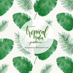 Tropical palm leaf pattern Free Vector