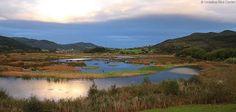 Las Reservas de la Biosfera de Dyfi (Gales) y Urdaibai unen su experiencia en un programa de trabajo conjunto