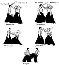 aikido basic techniques