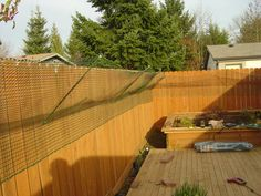 Picture of Catproof Your Yard