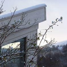Vårli - en Valdreshage. Blogg om hage, roser og drivhus.