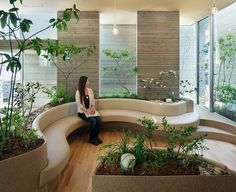 Forest Corridor by UID Architects Forest Corridor by UID Architects – Corridor 2020 Office Space Design, Office Interior Design, Office Interiors, Interior Garden, Interior Exterior, Interior Architecture, Clinic Design, Healthcare Design, Lounge Design