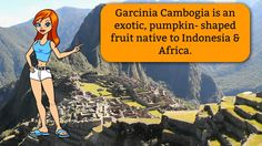 **Garcinia Cambogia Select Review | Watch Before Buying Garcinia Cambogi...