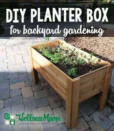 DIY Planter Box Tutorial for Patio or Balcony This simple planter box is made with resilient cedar to be an eco-friendly and long lasting home to greens, herbs or whatever you plant! Raised Planter Boxes, Planter Box Plans, Pallet Planter Box, Cedar Planter Box, Planter Ideas, Long Planter Boxes, Vegetable Planter Boxes, Backyard Planters, Balcony Planters