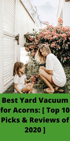 the best yard vacuum for acorns that come with a variable speed accelerator, it will be easy to suck on those dry leaves. Some modern leaf vacuum cleaners are designed with adjustable straps. Best Vacuum, Vacuum Cleaners, Dry Leaf, Yard, Leaves, Good Things, Modern, Design, Patio