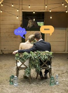 Funny horse wedding photo