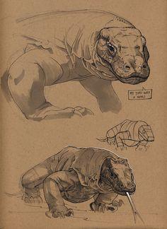 ArtStation - Komodo dragon, Floris van der Peet