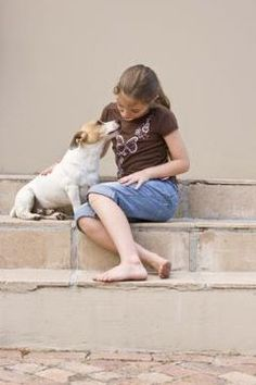 According to the Humane Society of the United States, there are about 77.5 million dogs owned by families across America. These dogs are not just man's best friend, but also a potential ...
