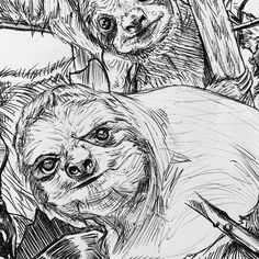 31 Likes, 1 Comments - Zoltan Maar Soul Meaning, Artwork Drawings, Sloths, Feeling Loved, Illustration Artists, Loyalty, Drawing S, Insta Art, Gratitude