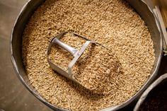 Farm to Fork: Bluebird Farm Grains