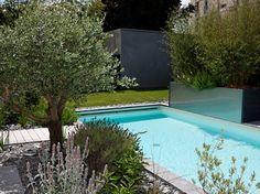 Voici un projet d\'aménagement d\'un jardin avec piscine dans une ...