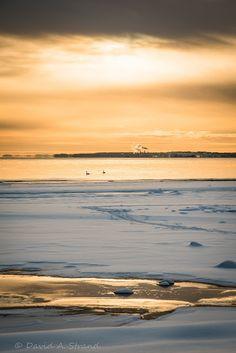 Stranded on Planet Earth: Winterlandscape at Reier