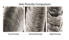 The 411 on Hair Porosity