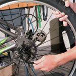Bike maintenance!