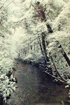 snowy Wild River - Smith, KY