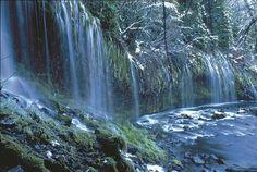 Mount Shasta Pictures - Traveler Photos of Mount Shasta, CA . California Vacation, Northern California, Mount Shasta California, Lake Shasta, Going Home, Atlantis, Gaia, Nature Photos, Vacation Spots