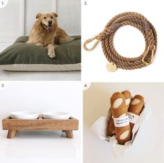 Design-Forward Pet Accessories Roundup - Emily HendersonMel's Design-Forward Pet Accessories Roundup - Emily Henderson of all proceeds will be donated to a local animal shelter. Dog Accesories, Pet Accessories, Modern Dog Toys, Puppy Starter Kit, Fluffy Shoes, Dog Branding, Dog Boots, Dog Costumes, Dog Paws
