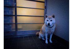 Photo byPhoTones_TAKUMA「早く仕事を終わらせて、おうちに帰りたい」と思いながらも、ついつい残った仕事が気に...