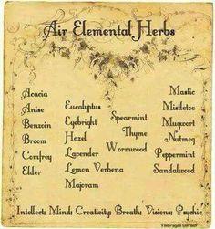 Book of Shadows: 4 elements herbs Magic Herbs, Herbal Magic, Plant Magic, Air Elemental, Elemental Magic, Water Element, Fire Element, Healing Herbs, Medicinal Herbs