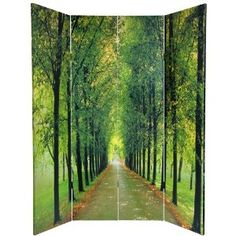 Rocky Stream Image - 6ft. Path of Life Nature Photography Room Divider - 2 Sizes