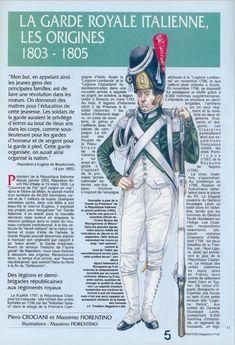 Kingdom Of Naples, Kingdom Of Italy, Napoleonic Wars, History, 19th Century, 18th, Lower Backs, War, Weapons Guns