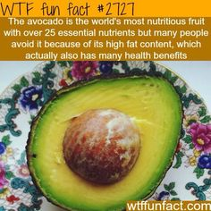 WTF Facts : funny, interesting & weird facts — The most nutritious fruit in the world Wow Facts, Wtf Fun Facts, True Facts, Funny Facts, Random Facts, The More You Know, Good To Know, Just For You, Health Facts