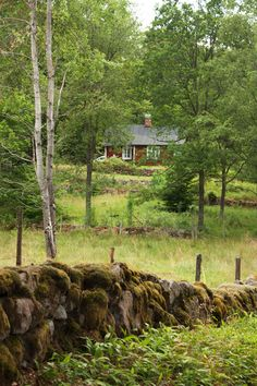 Småland, Sweden - this is exactly what Swedish countryside looks like - I love it!