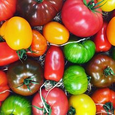 #hopestreet #60hopestreet #liverpool #eatlocal #locallygrown #locallysourced #tomatoes #bestofbritish #60menu