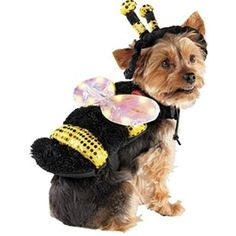 f21bb15f9eb LED Bee with light up wings Pet costume - size S *** You can