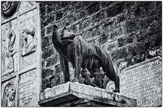 La Lupa, the she-wolf, symbol of Rome.