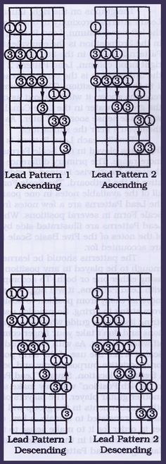 """Learning Guitar: Pentatonic Scales and Lead Patterns Caged"" Goal: More practice on Guitar"