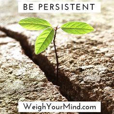 Be persistent and yo...
