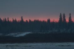 Hints of purple in the sky before sunrise looking across the Moose River from Moosonee. Before Sunrise, Present Day, Ontario, Vintage Photos, Moose, Sky, River, Mountains, Purple