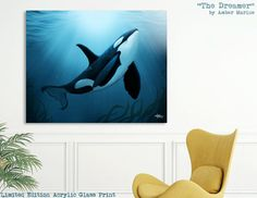"""Limited Edition Acrylic Glass Print • """"The Dreamer"""" - Orca Art by Amber Marine • Curioos"""