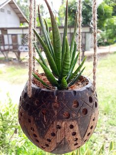 New DIY Small Size Natural Coconut Shell Hanging Planter For Small Flower #Handmade