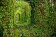 Gallerie in fiore, il percorso è romantico